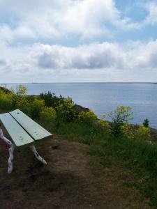 suo bench