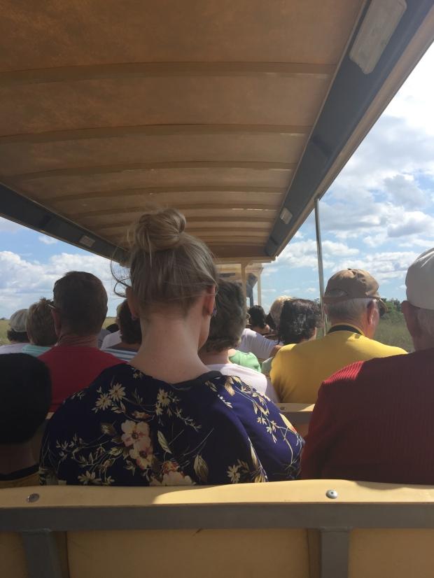 IMG_1630 Everglades Tram