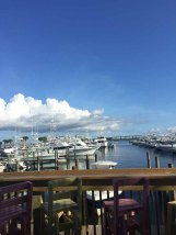 That view though! Shipp's Harbour of Orange Beach alabama.