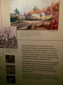 mammothwoodland