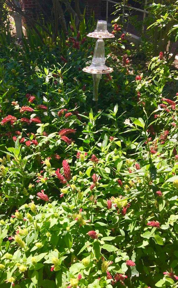 keys butterfly garden