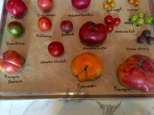 Heirloom Tomatoes of the day. Bottega, Birmingham, AL