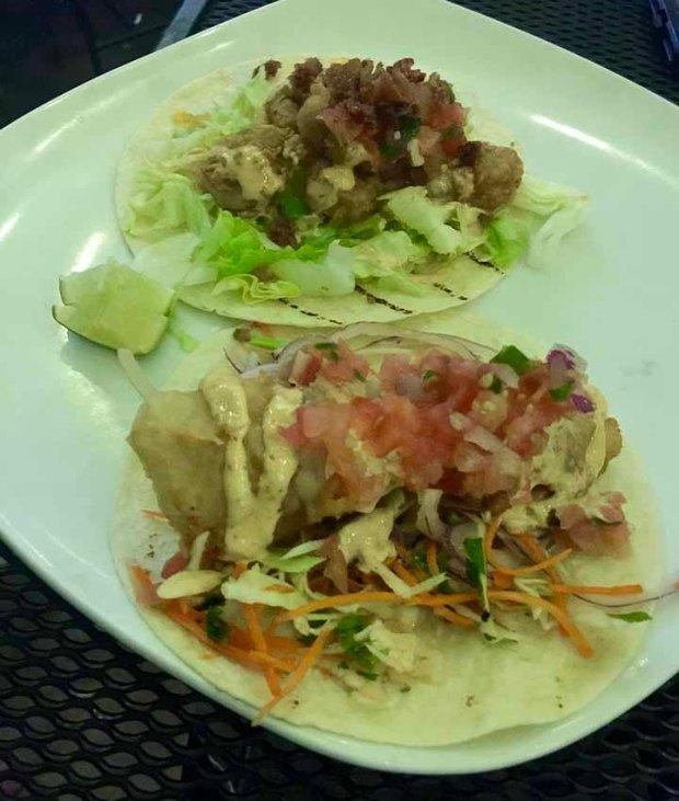 taco willy